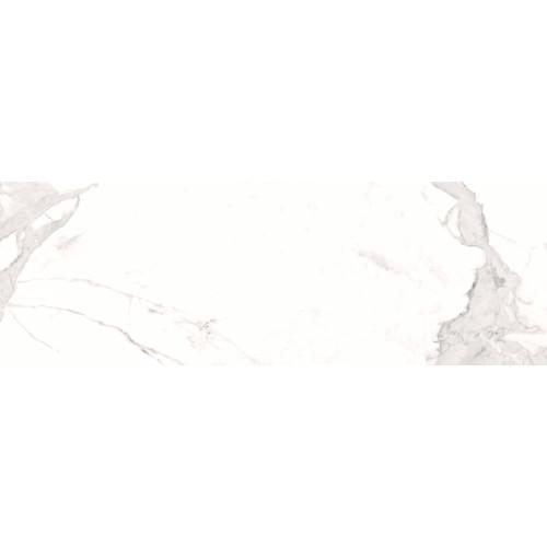 FAIANTA AVENZO SILVER W M 30X90